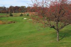Autumn Golf Course royalty free stock photos
