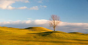 Autumn golf course Stock Image