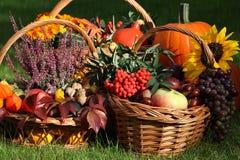 Autumn goodies. In wicker baskets on green grass stock photos