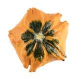 Autumn Gourd d'isolement Images libres de droits