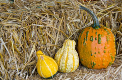 Autumn gourds on bale Royalty Free Stock Photography