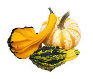 Autumn Gourds with Clipping Path. Three colorful autumn gourds with clipping path Stock Photography