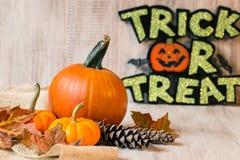 Autumn Gourds With Halloween Trick eller festtecken royaltyfri foto