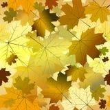 Autumn gradient seamless pattern royalty free stock photos