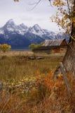 Autumn, Grand Tetons Stock Images