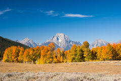 Autumn in Grand Tetons Royalty Free Stock Photos