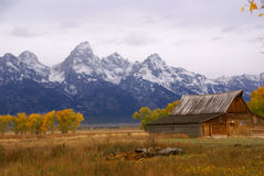 Autumn, Grand Tetons framed Royalty Free Stock Photos