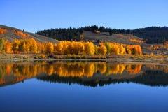 Autumn in Grand Tetons Stock Photography