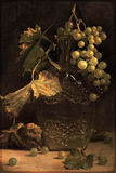 Autumn grape. Stock Images