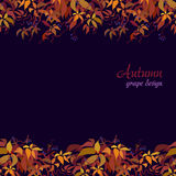 Autumn grape vine Royalty Free Stock Image