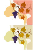 Autumn grape vines backgrounds set. Stock Photos