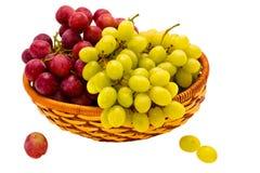 Autumn grapes Stock Photography