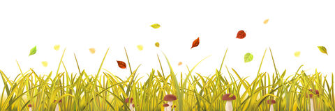 Autumn grass with mushrooms and leaves Royalty Free Stock Photo