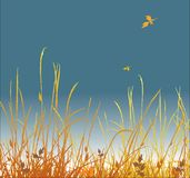 Autumn grass vector background Royalty Free Stock Photos