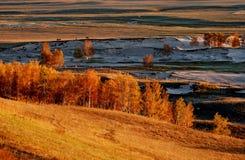 Autumn grassland Royalty Free Stock Photography