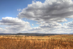 Autumn grassland. Fall on the grasslands of inner mongolia china Stock Image