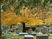 Autumn Graveyard Royalty Free Stock Photo
