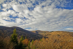 Autumn, Graveyard Fields Area. Blue Ridge Parkway, NC royalty free stock photography