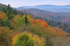 Autumn Great Smoky Mountains Stock Image