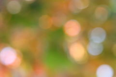 Autumn Green Background - Unschärfe-Fotos auf Lager Lizenzfreies Stockbild
