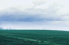 Autumn Green Field Photographie stock libre de droits