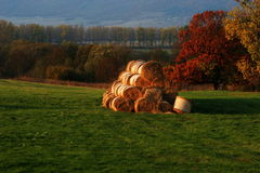 Autumn. Green hills in autumn with hay Stock Images