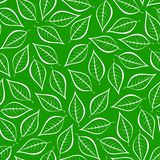 Autumn green natural background from contours of white leaves. Seamless decorative eco backdrop. Environmental pattern with floral. Leaves royalty free illustration