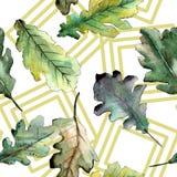 Autumn green oak leaf. Leaf plant botanical garden floral foliage. Seamless background pattern. Fabric wallpaper print texture. Aquarelle leaf for background stock illustration
