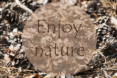 Autumn Greeting Card, Quote Enjoy Nature Royalty Free Stock Photography