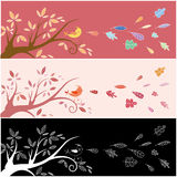 Autumn greeting card Royalty Free Stock Image