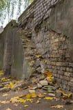 Autumn Grey Wall Royalty-vrije Stock Foto's