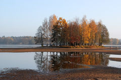 Autumn group of trees. Autumn trees on the small pond Stock Photo