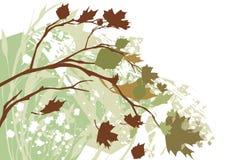 Autumn Grunge Background. Autumn elements on a grunge background stock illustration