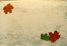 Autumn grunge background. Leaf paper Royalty Free Stock Photos