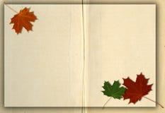 Autumn grunge background. Leaf paper Stock Photo