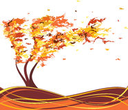 Autumn grunge tree in the wind. Vector Royalty Free Stock Photography