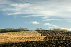Autumn half-plowed field Royalty Free Stock Photos