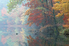 Autumn Hall Lake Stock Photo