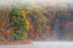 Autumn, Hall Lake in Fog Stock Photography