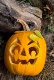 Halloween themes. Autumn halloween jack-o-lantern on autumn wooden background. Autumn halloween jack-o-lantern on autumn wooden background stock image