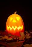 Autumn halloween pumpkin Stock Photography