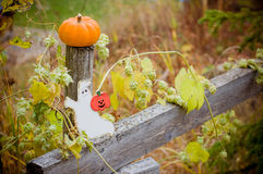 Autumn halloween pumpkin and ghost figure on the wooden fence. With hop Stock Images