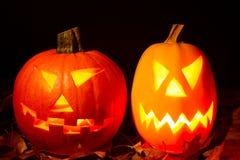 Autumn halloween pumpkin Stock Photos