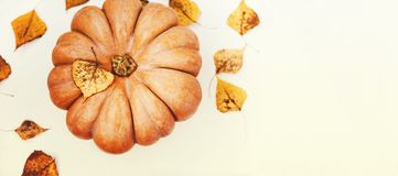 Autumn,halloween  pumpkin on white table with dry fall autumnal. Leaves ,Top view and copy space Royalty Free Stock Images