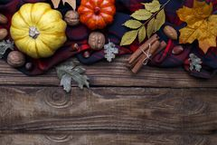Autumn halloween or thanksgiving backgrouund. Yellow and orrange pumpkin and dried leaves copy space royalty free stock image