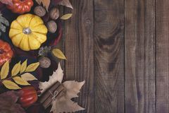 Autumn halloween or thanksgiving backgrouund. Yellow and orrange pumpkins and colorful leaves old barn wood plank stock images