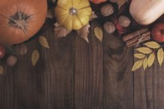 Autumn, halloween or thanksgiving backgrouund. Yellow and red leaves and colorful pumpkins.copy space, flat lay stock photos