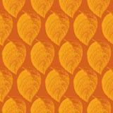 Autumn hand drawn leaf. Wallpaper seamless pattern background. Stock Photo