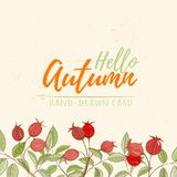 Autumn hand drawn vector illustration royalty free stock photography