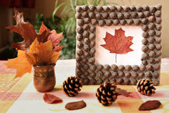 Autumn handmade frame from acorn's hat Royalty Free Stock Image